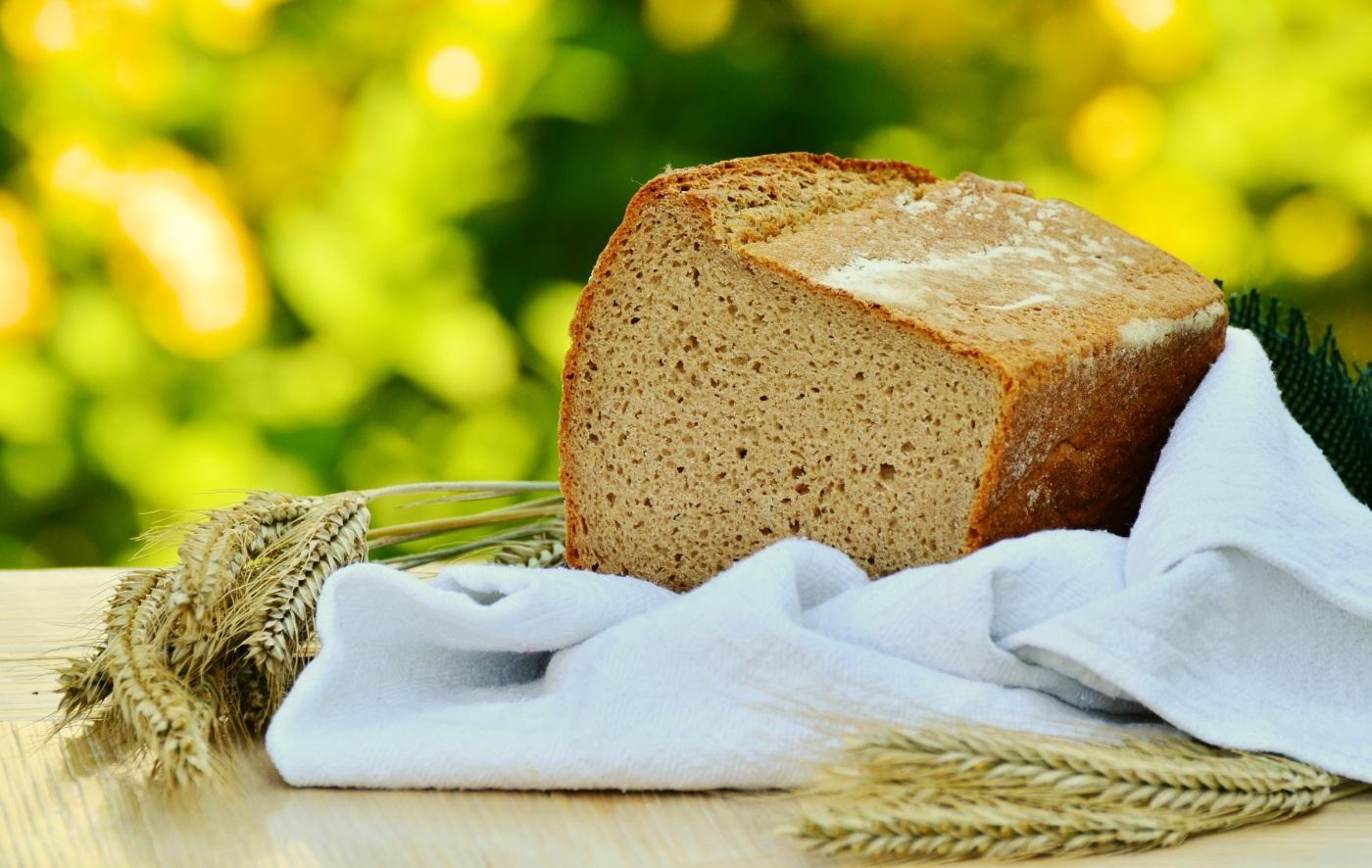 roti-atau-biskuit-gandum
