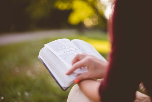 membaca-buku-novel-sastra-atau-novel-ringan-berbahasa-inggris