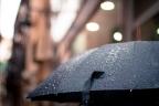Musim Hujan Bukan Halangan untuk Tetap Produktif Kerja